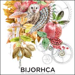 bijorhca-09